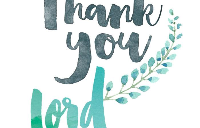 Attitude of gratitude 51