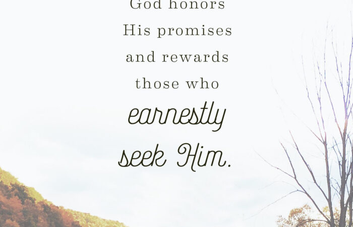 The-True-Reward